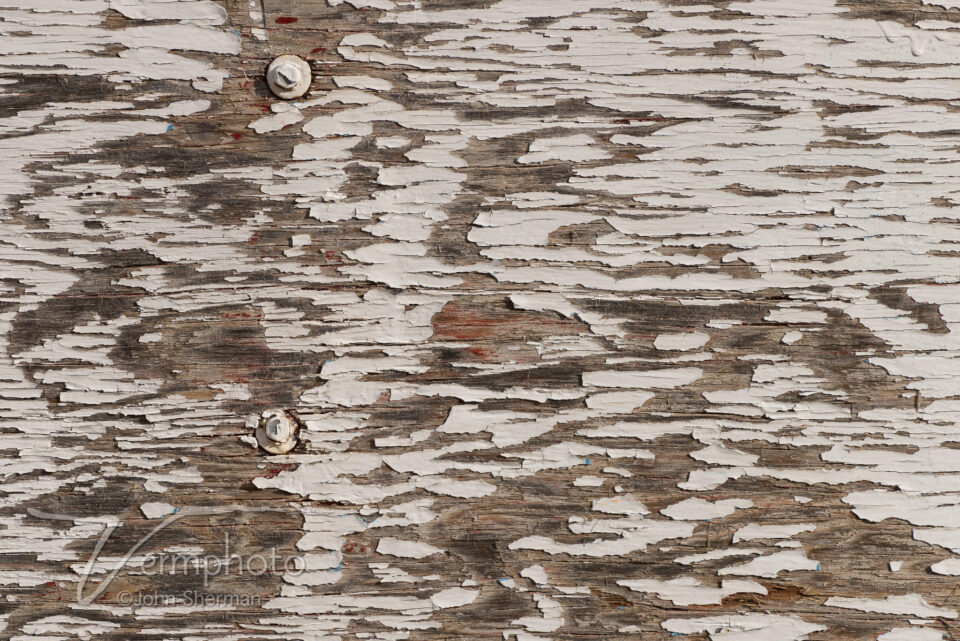 Verm-weathered-wood-7282