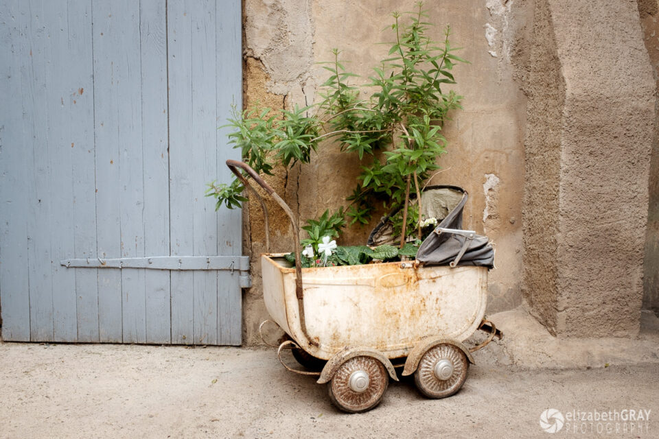 Babybuggy Planter