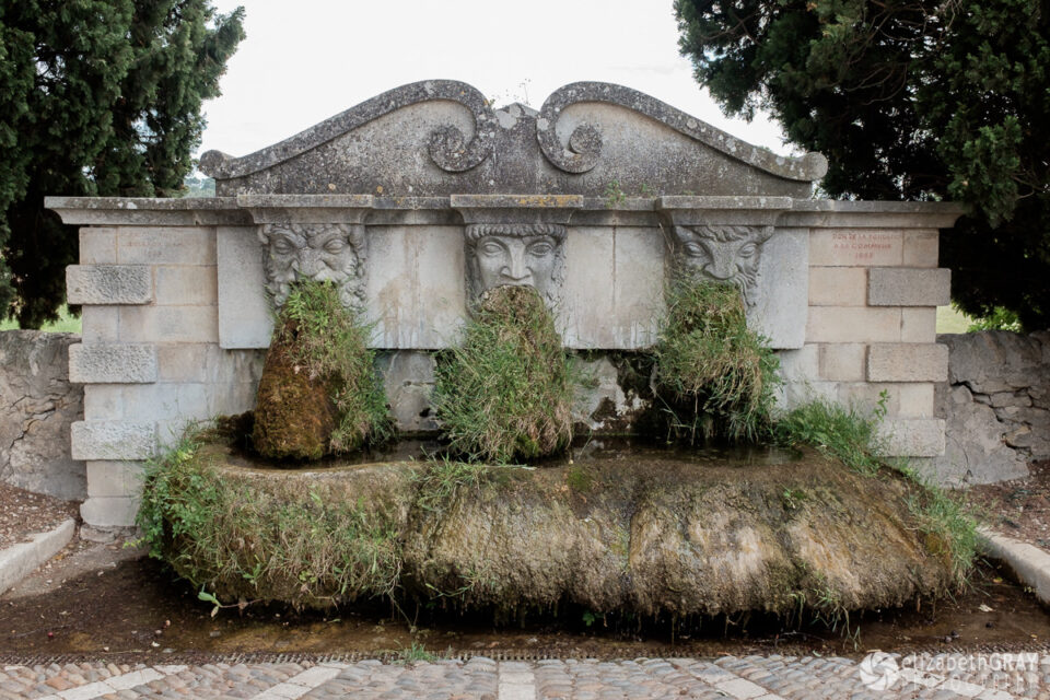 Overgrown Fountain
