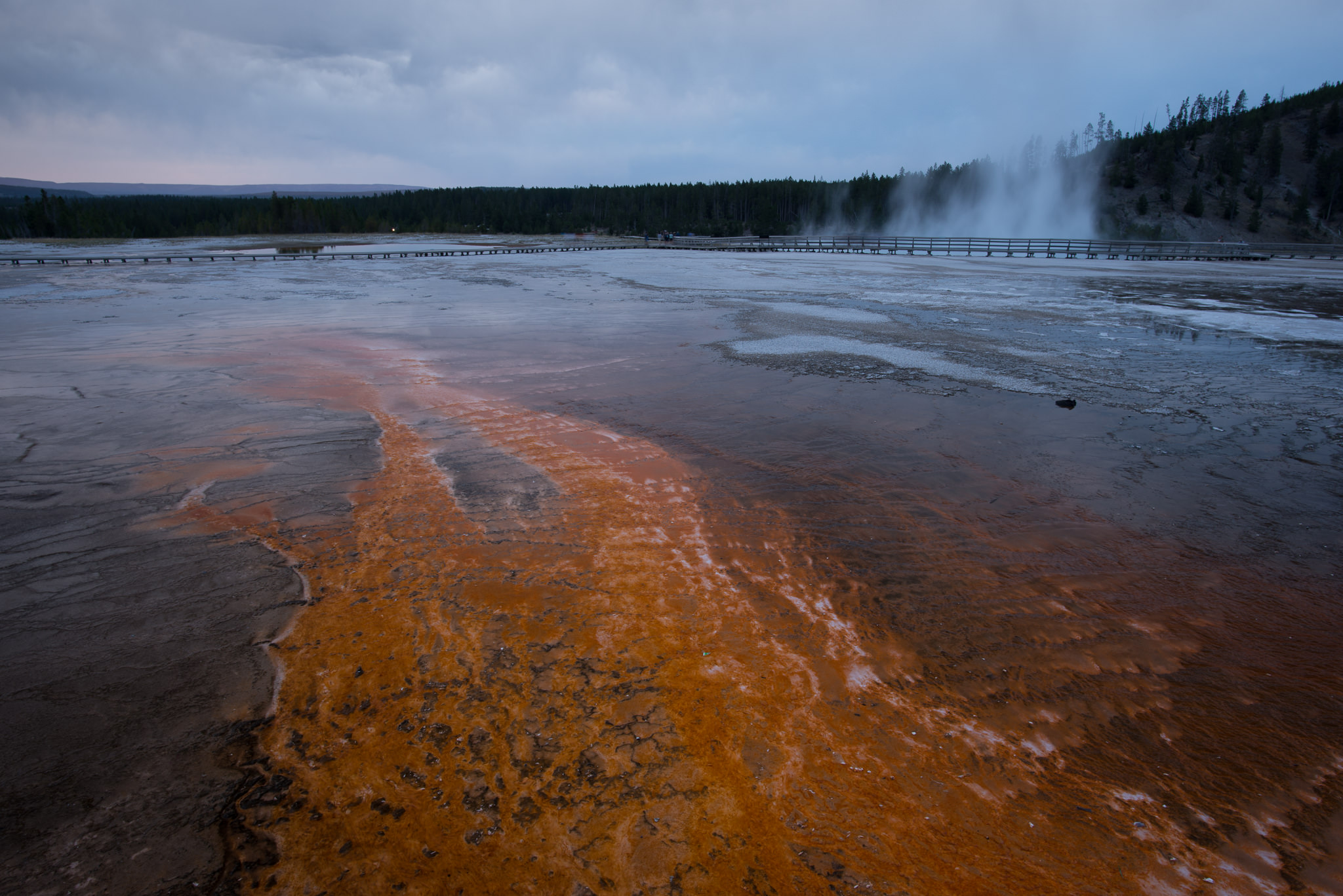 On the Road: Traveling Through Yellowstone