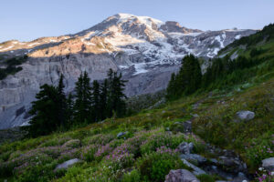 On the Road: Two Days at Mount Rainier