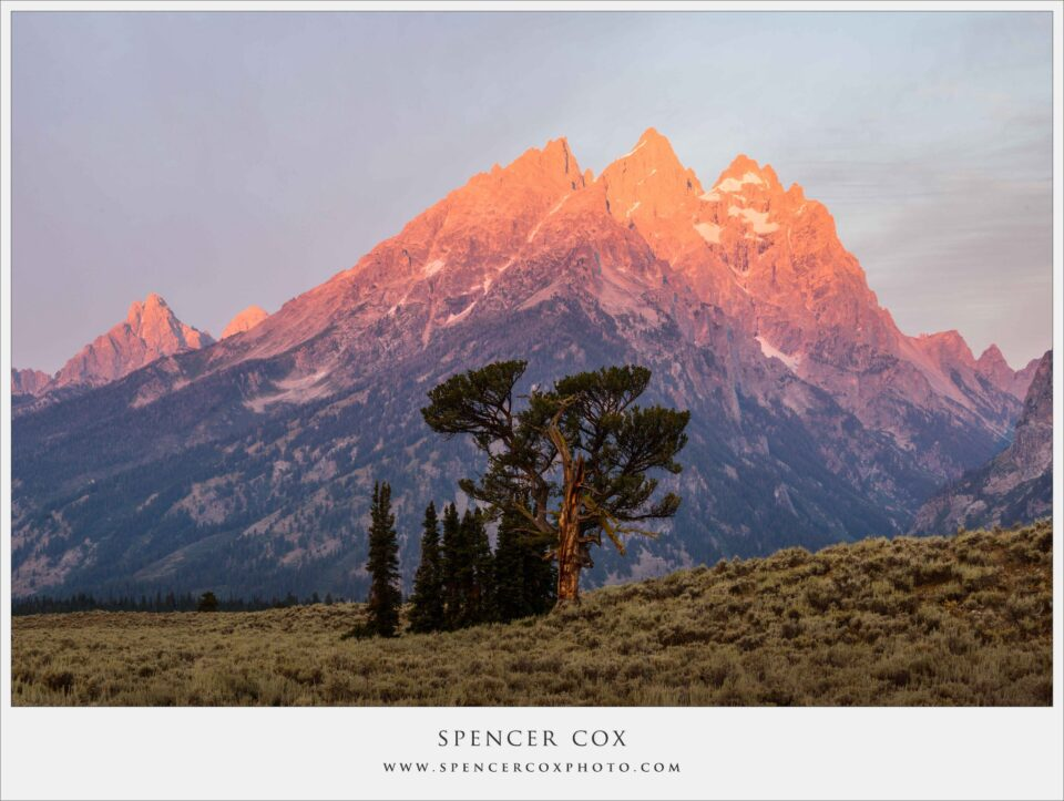 Spencer-Cox Warm and Cold