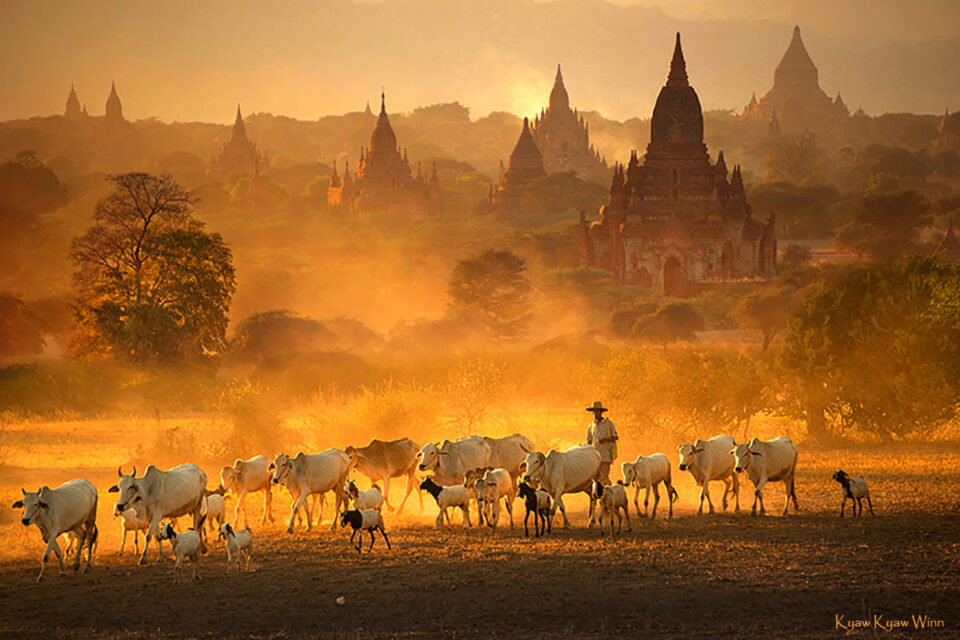 1. Kyaw-Kyaw-Winn_Bagan_Myanmar_Luminous-Journeys-Photo-Tours