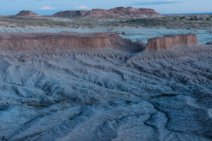 Verm-4stop-VR-Petrified-Forest-7992