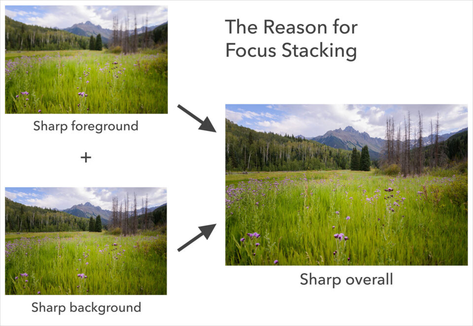 Why focus stack