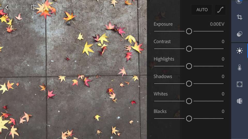 Lightroom Mobile Editing Screen