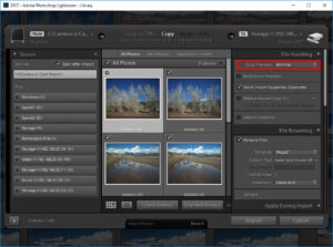 Lightroom Import Previews