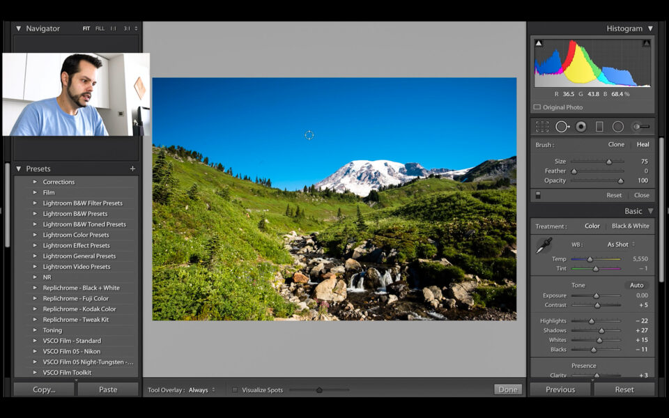 Lightroom Spot Removal Tool Tutorial