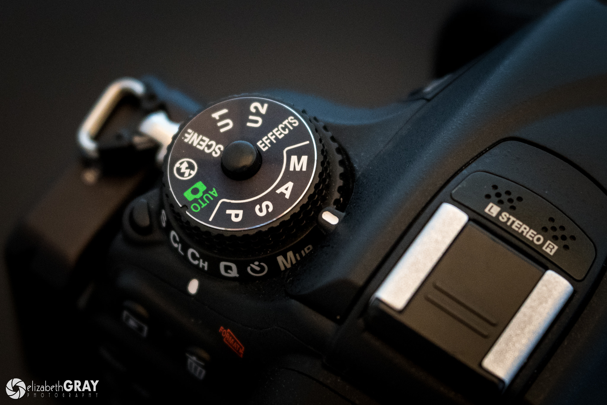 Understanding Auto ISO in Photography