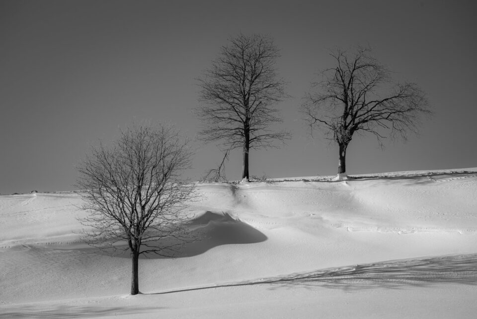 Winter Photography Tips (2)