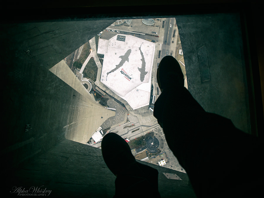 19 Glass Floor CN Tower