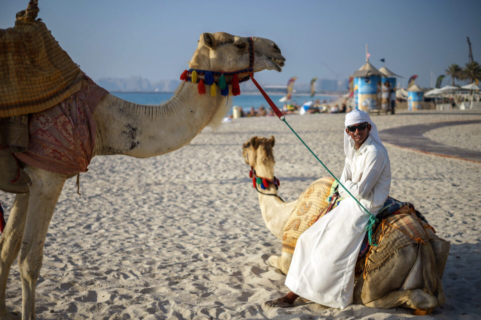 Camel Man in Dubai