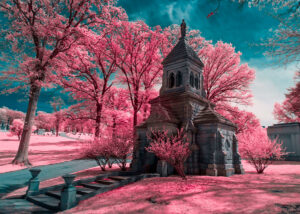 Infrared Photography: Getting More Color From Your 720nm Filter