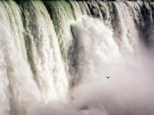 Postcards From Niagara Falls