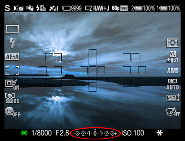 Electronic Viewfinder Exposure Compensation Overlay