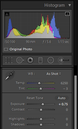 Blue Mosque Exposure and Histogram in Lightroom