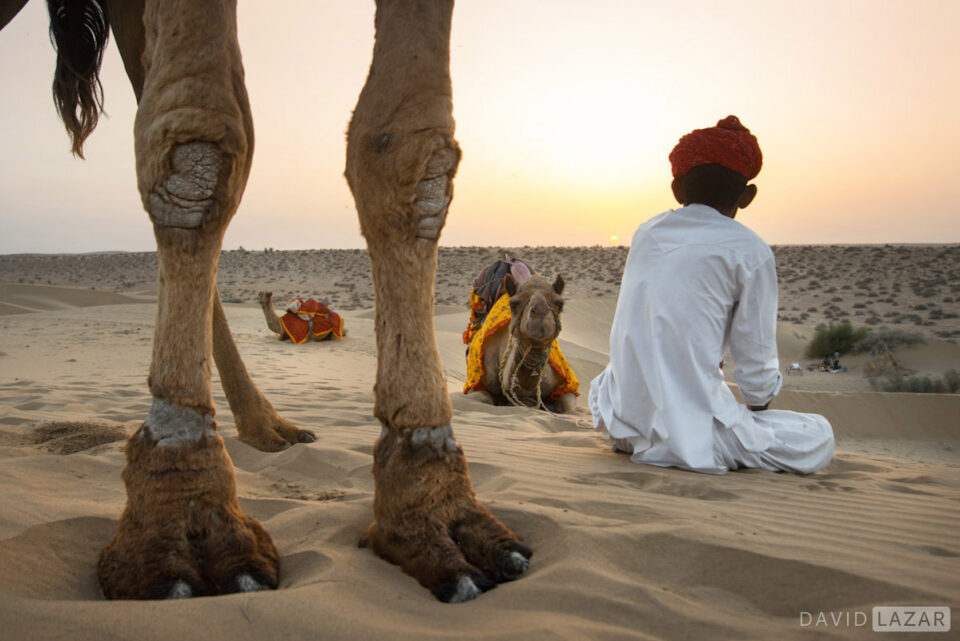 14. David Lazar - Thar Desert-India