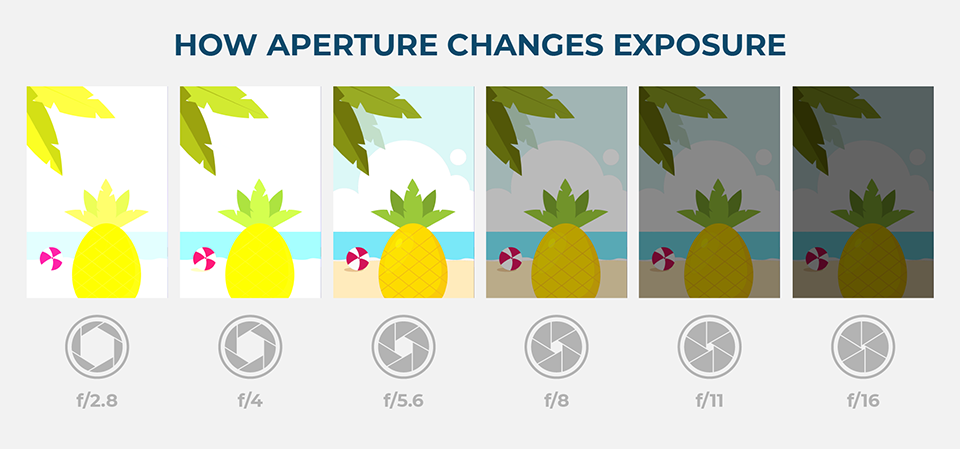 An illustration of aperture and how it affects exposure