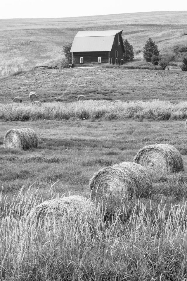 Bails and Barn