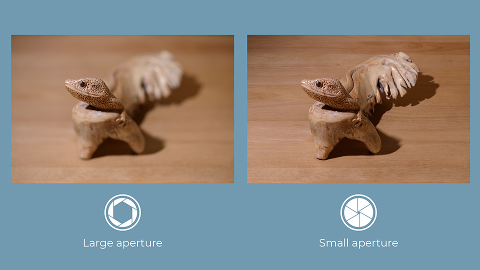 Depth of Field Comparison f4 vs f32