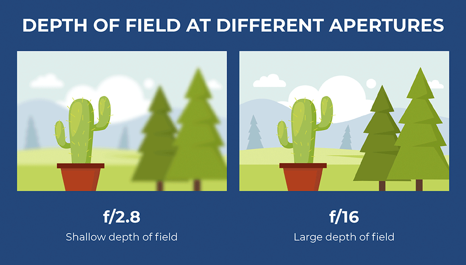 Depth of Field at Different Aperture Settings