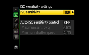 Introduction to ISO in Photography