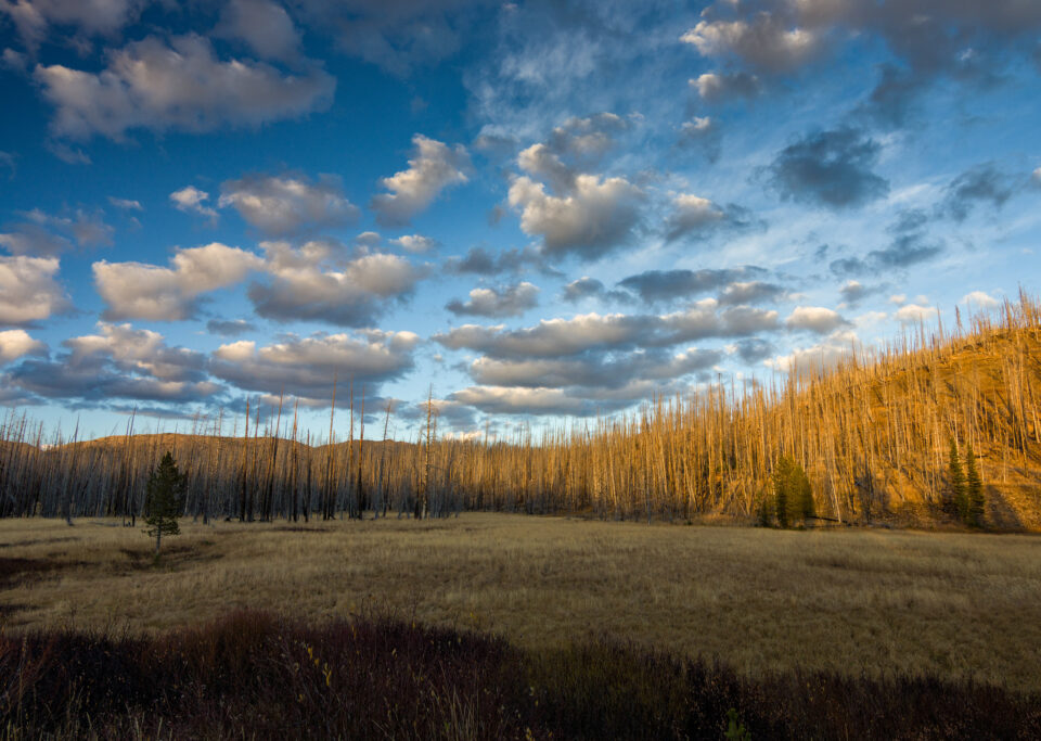 Patchy Clouds in Yellowstone