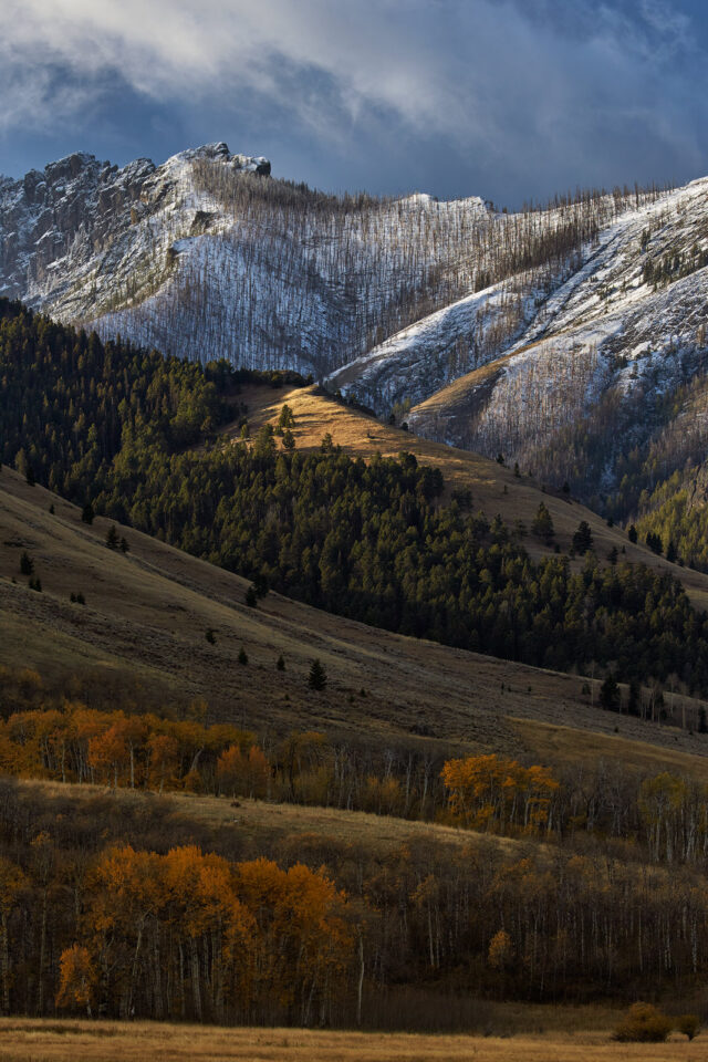 Fall in Yellowstone