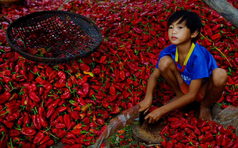 Kid with Red Peppers