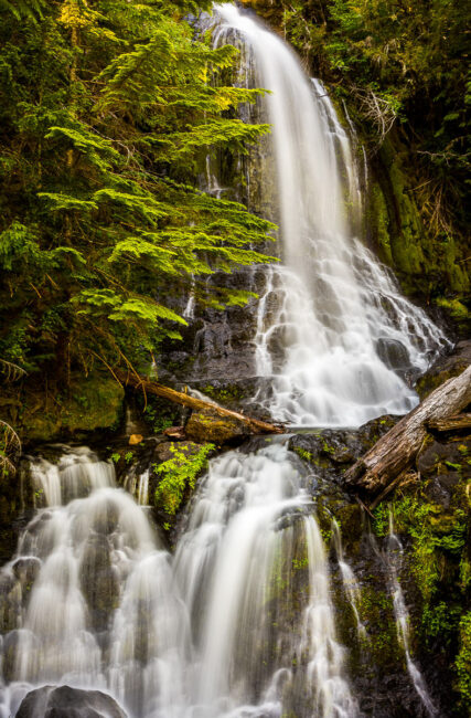 Waterfall in Mt Rainier National Park