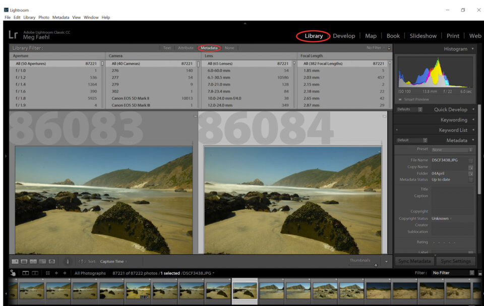 Metadata Options in Lightroom