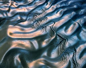 Pattern in the mud, Paria Canyon-Vermillion Cliffs Wilderness Area, Utah 1985_©Copyright © 2006 William Neill