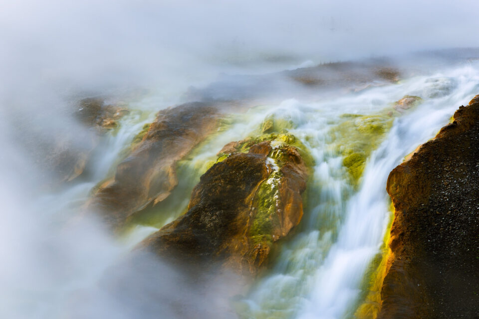 2. Runoff from a hotspring, Yellowstone
