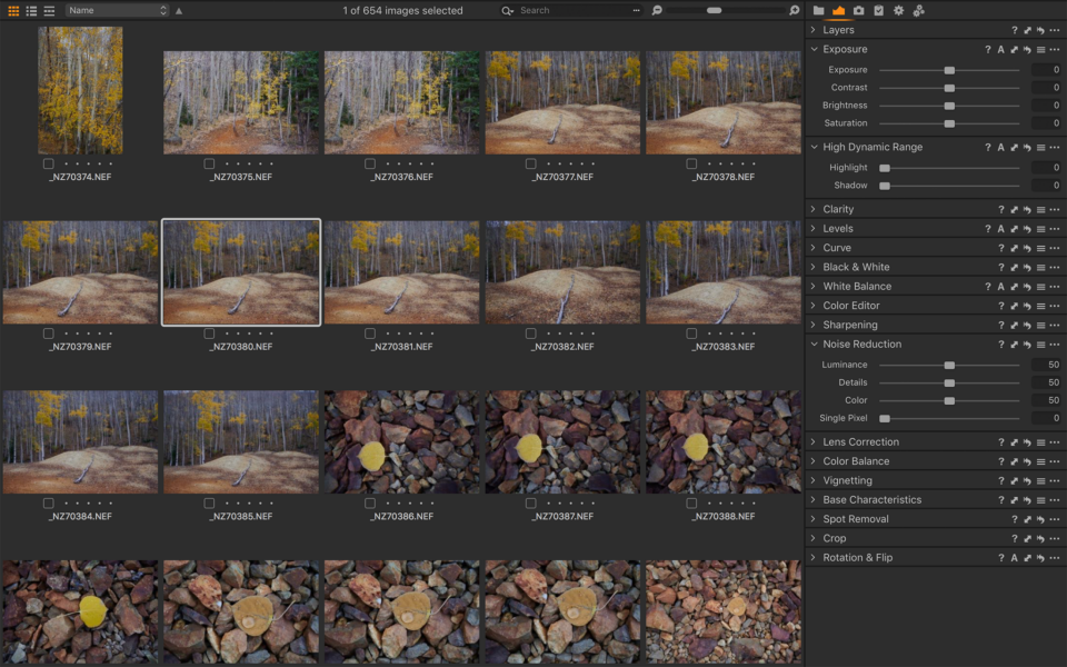 Capture One Layout
