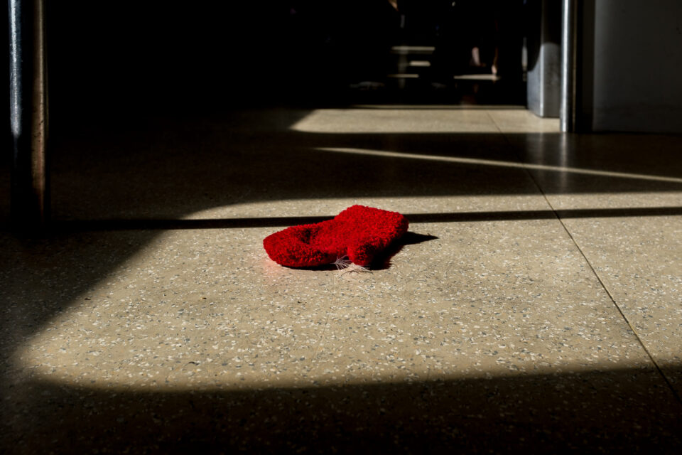 Lonely Red Mitten