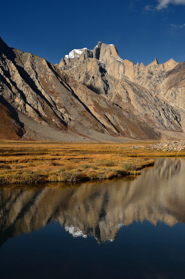 A vertical reflection with mountain in the background