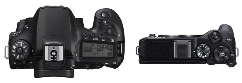 Canon 90D vs M6 Mark II Top to Scale