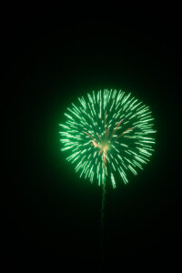 Green firework against black sky