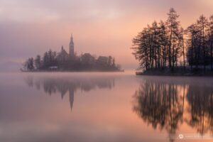 Misty morning at Lake Bled. A typical scene in winter.