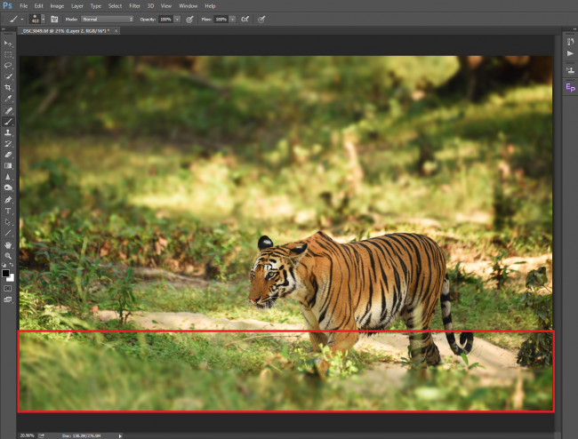 How to Blur Background in Photoshop Using Lens Blur